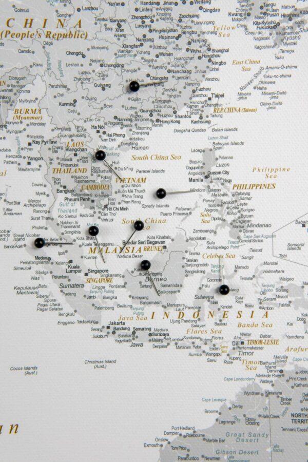 Detailliert Welt Pinnwand Karte – Grau