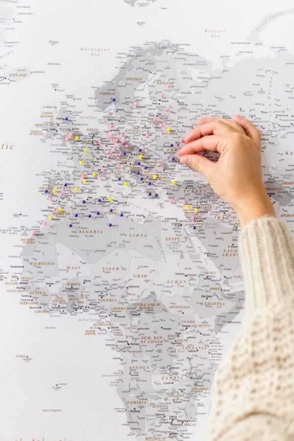 Weltkarte Pinnwand Grau mit pins