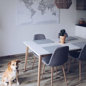 Zum-Aufhängen-bereites-Wandbild-Wand-Pinnwand-Weltkarte-Grau