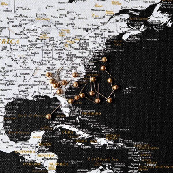 detailliert-Pinnwand-Weltkarten-mit-stecknadeln-schwarz