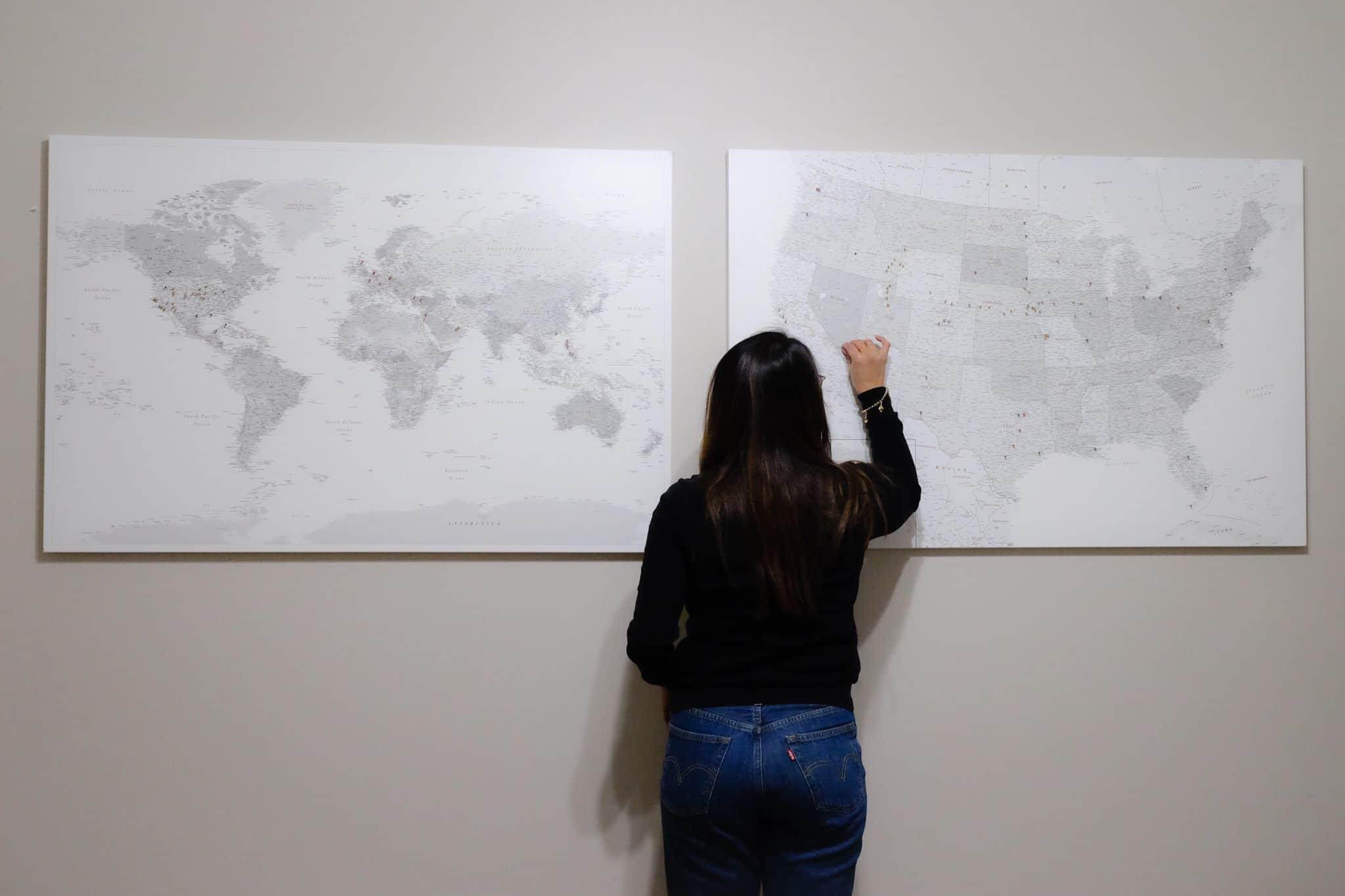 Grau Weiß Detailliert Kartes Mit Pins Welt USA